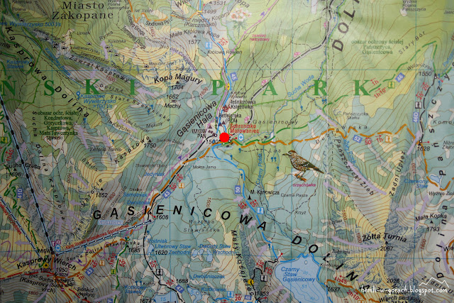 Murowaniec na mapie