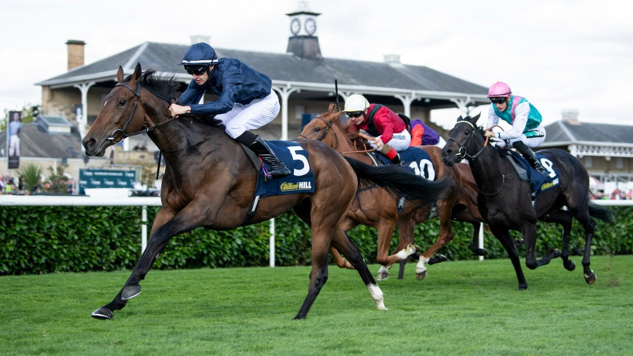 Fleeting - horse racing