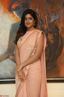 Eesha Rebba in beautiful peach saree at Darshakudu pre release ~  Exclusive Celebrities Galleries 058.JPG