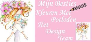Het design team