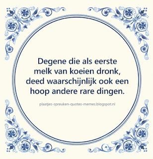 leuke spreuken in het nederlands