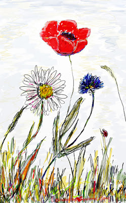 Wild flower digital painting: poppy, cornflower, daisy