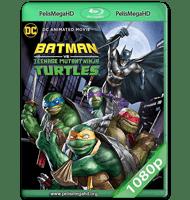 BATMAN Y LAS TORTUGAS NINJA (2019) WEB-DL 1080P HD MKV ESPAÑOL LATINO
