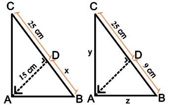 Kesebangunan merupakan salah satu ilmu yang termasuk dalam kategori ilmu geometri Materi Kesebangunan Bangun Datar (Pengertian, Rumus, dan Contoh)