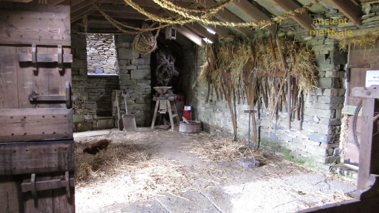 Image result for winnowing barley on the threshing floor