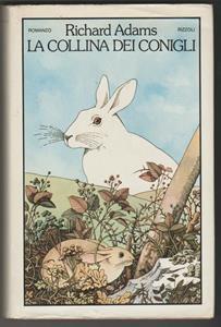 Coniglio velocità datazione