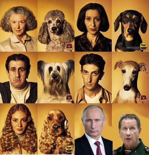 Говорят, что собаки похожи на своих хозяев...