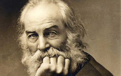 how Whitman has used imagery in his poems.