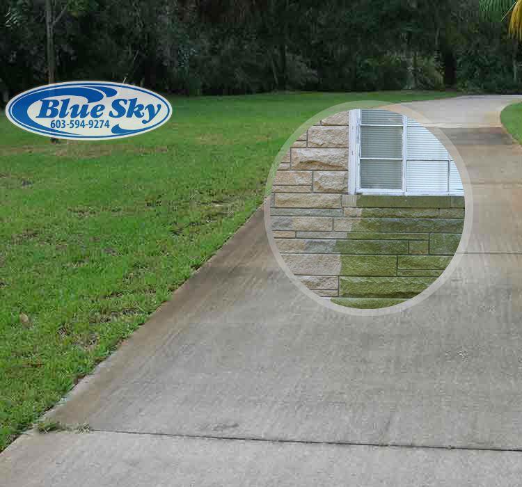 Concrete Building & Masonary Flooring