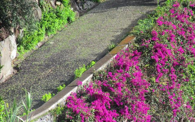 uma Quinta Madeirense com entrada charmosa