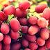 Obat Kanker Usus Menggunakan Kulit Anggur Merah