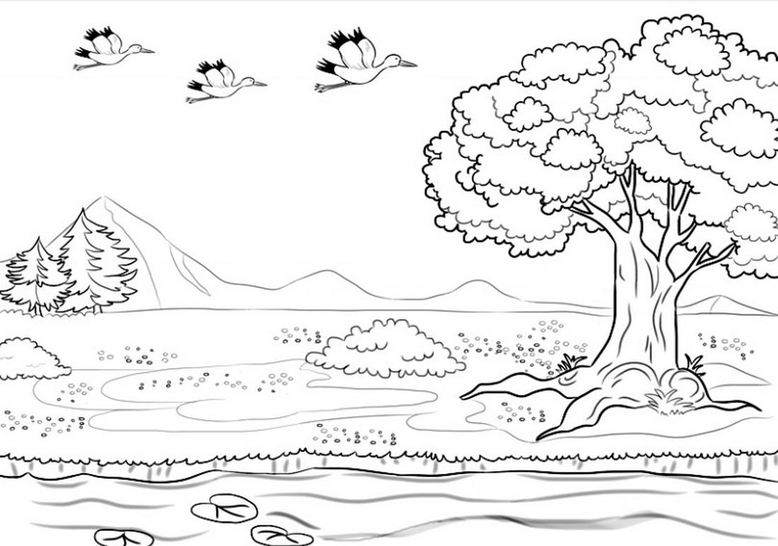 El Arte Es Su Máxima Expresión Serie De Láminas De Paisajes Fáciles Para Colorear