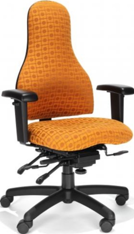 RFM Preferred Seating Carmel Ergonomic Chair