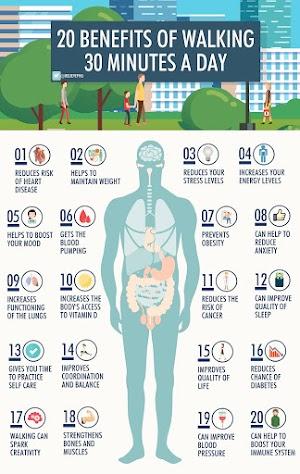 20 Manfaat Jalan Kaki 30 Menit  Sehari