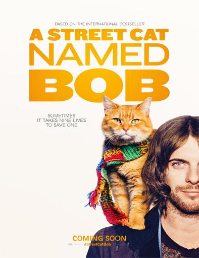Ver Un gato callejero llamado Bob (2016) Online