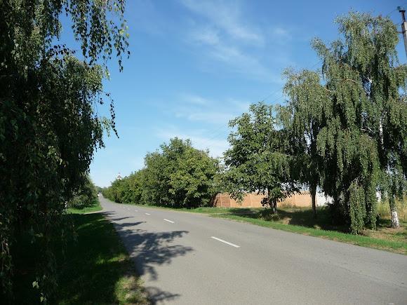 Дорога до Свято-Вознесенського монастиря