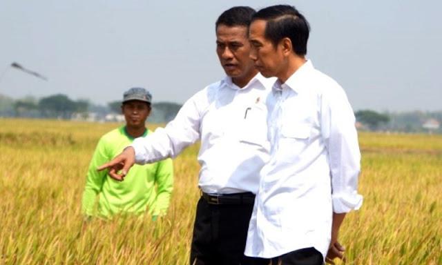 Janji Jokowi Tiga Tahun Swasembada Pangan, Netizen: Kunyah Ni Pelan-pelan