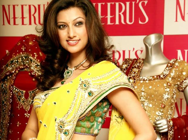 Hamsa Nandini Hot Saree Wallpaper