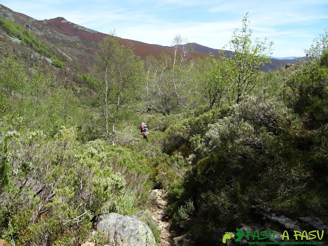 Ruta al Mustallar: Camino de los Gallegos