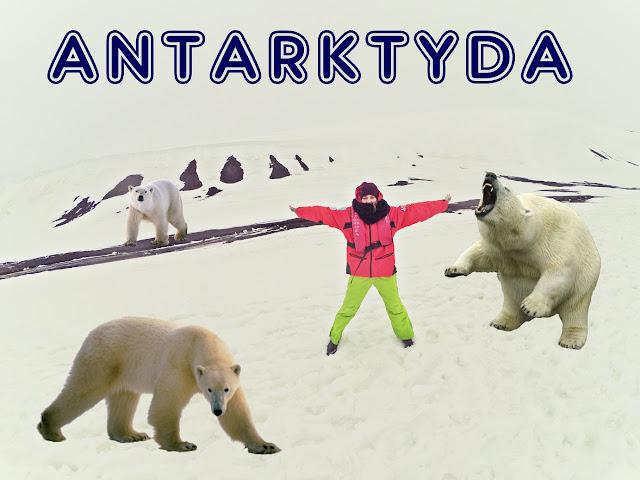 Niedźwiedzie polarne nie żyją na Antarktydzie!