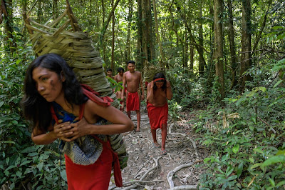 5 Photos: The Lives Of Amazonian Waiapi Tribe As They Battle Against Extinction Lifestyle