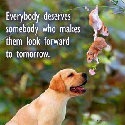 Every deserves somebody who makes them look forward to tomorrow