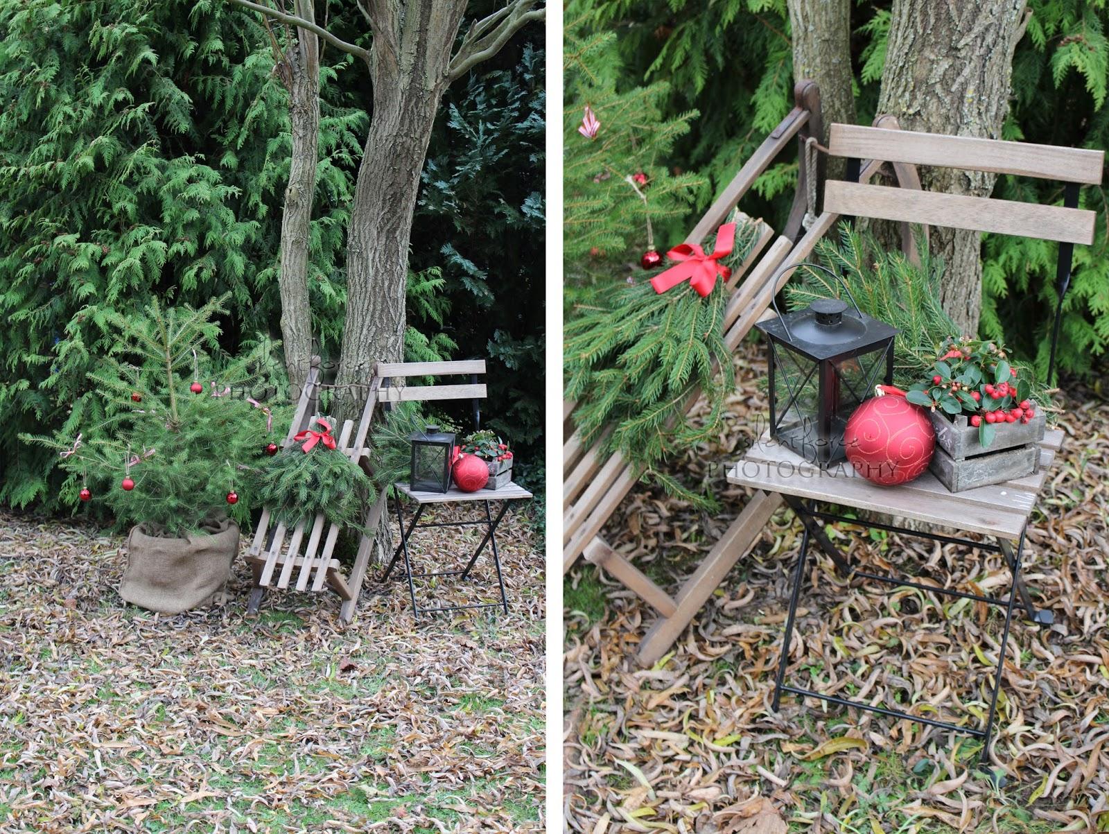Lieblings Weihnachtlicher Garten / silentforce garden @LD_64