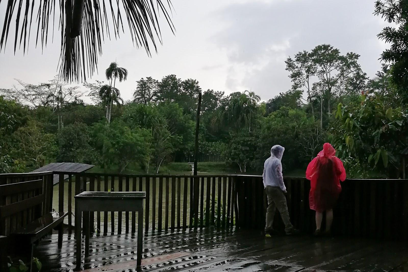 Fundo Pedrito, Iquitos, Selva, Turismo