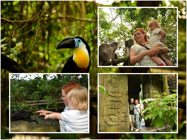 Randers Regnskov - Tropical Zoo