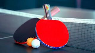 Pengetahuan Dasar Tenis Meja untuk Anak Sekolah Dasar