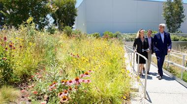Los jardines conquistan las nuevas sedes corporativas