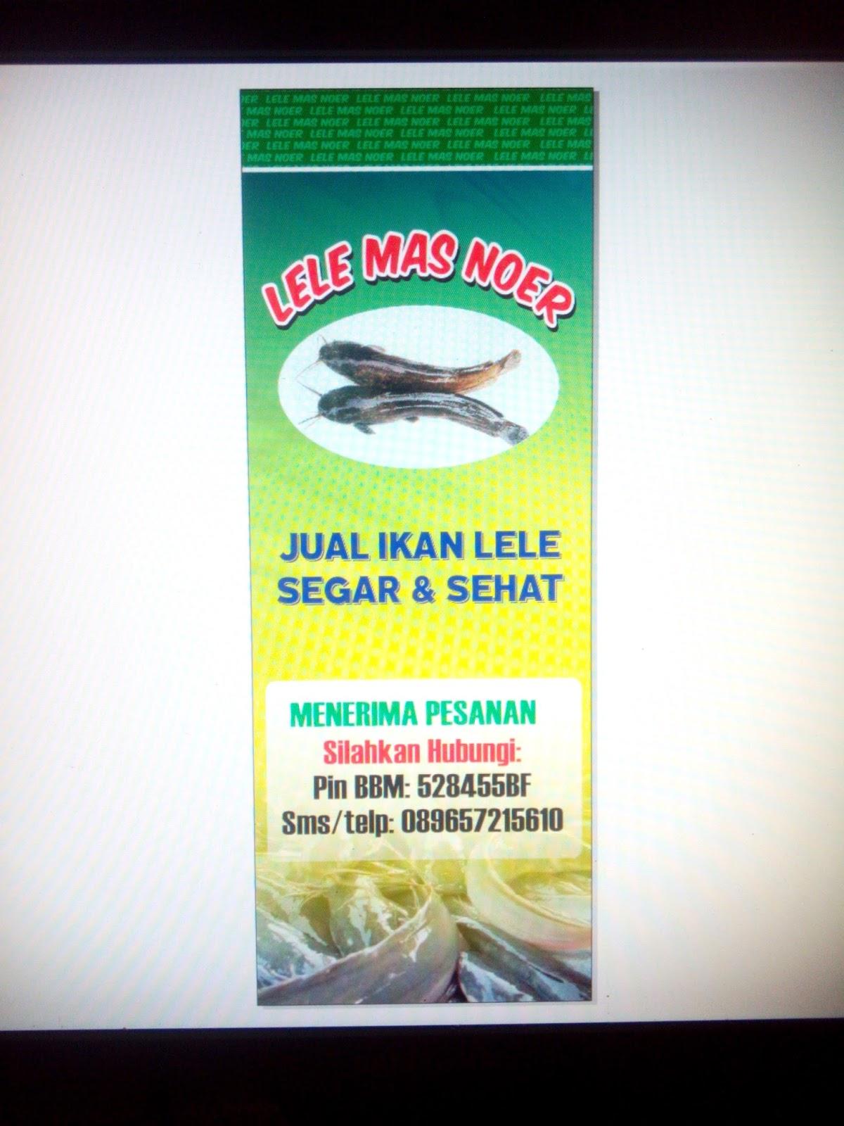 Contoh Spanduk Jual Ikan Lele - desain spanduk keren