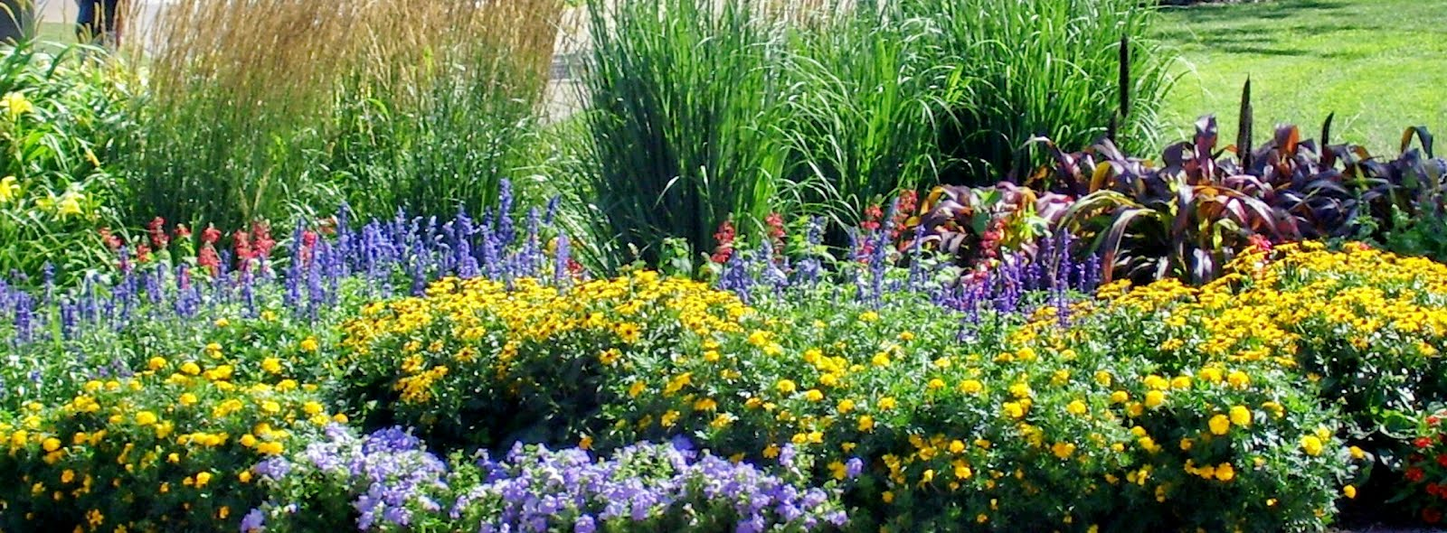 Talking to Plants: My Dream Garden on My Dream Patio  id=78201