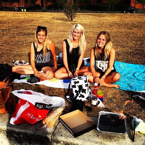 Grill, hygge, veninder, sommer, 2013, bryggen, islands brygge, engangsgrill, øl, gymnasium, gymnasie