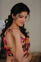 Actress Richa Panai New Pos from Rakshaka Bhatudu Telugu Movie  0005.jpg