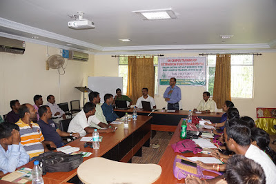 India: Season-long training on rice cultivation under way in Odisha