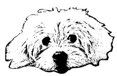 Schwarz-weißes Plottbild mit Hund Rosi (Original von A. Bade)