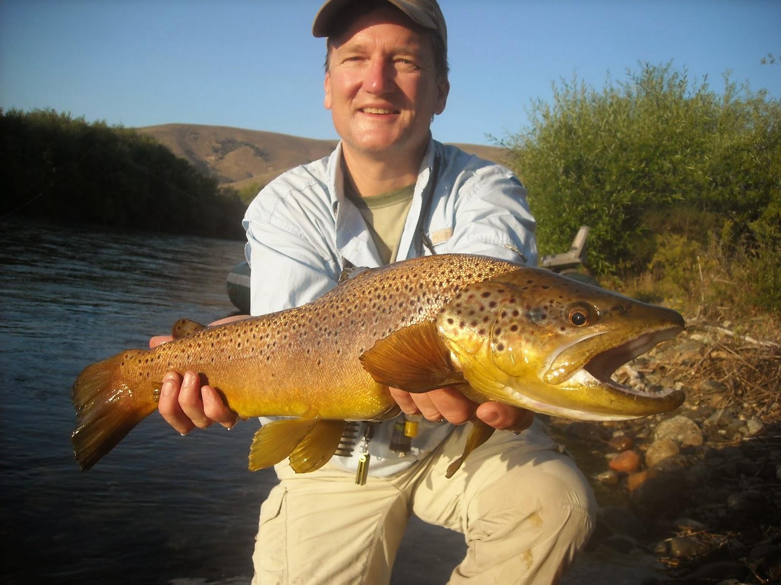 Diy fly fishing patagonia argentina trout sea run for Diy fly fishing