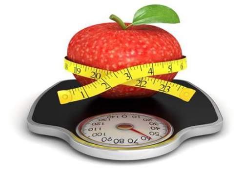 Program Diet Alami