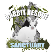 Rabbit Rescue Sanctuary