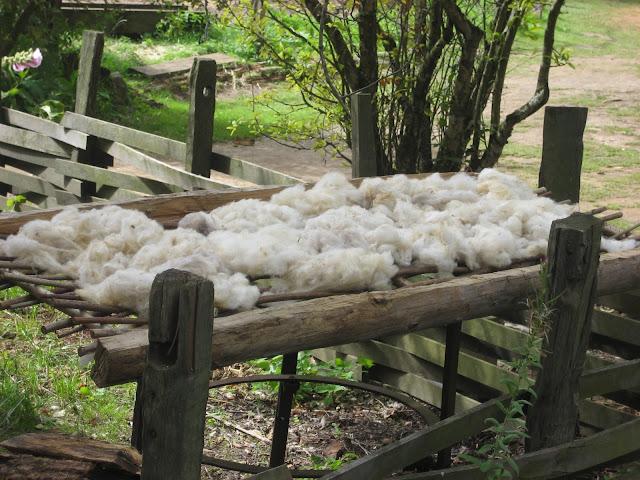 Wolle Trocknen