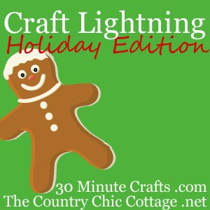 Craft Lightning Holiday Edition -- come link up your holiday crafts that take 15 minutes or less to complete for a chance to be featured!