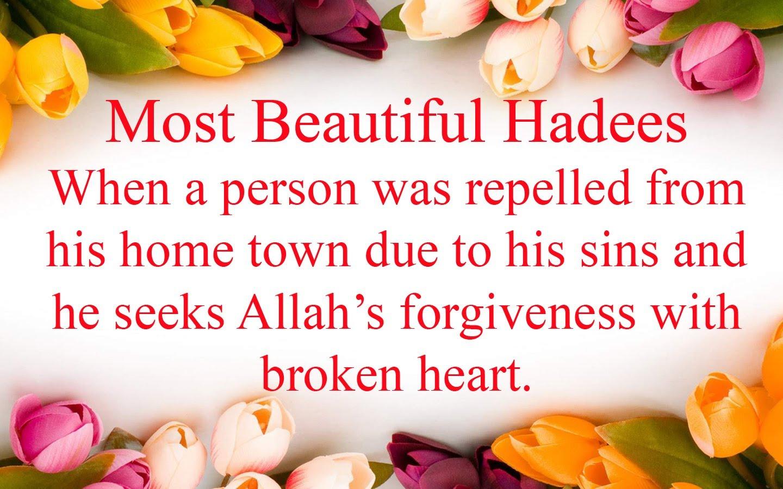 Most beautiful Hadee