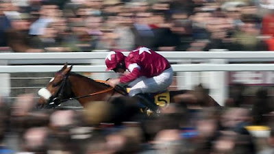 Tiger Roll wins at Cheltenham and now goes for the Grand National 2019