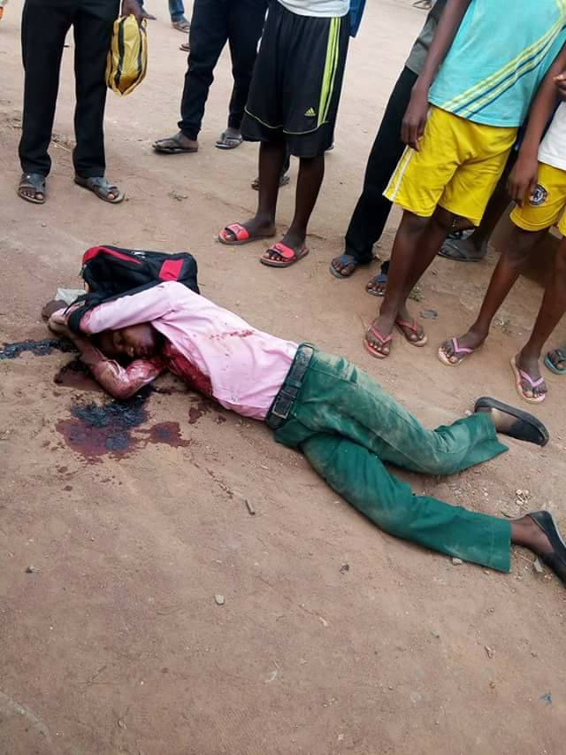 Thugs Storm Benue Community, Kill Many & Destroy Homes  - Graphic Photos