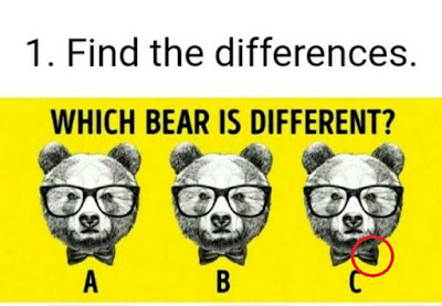 Answer of Find the Different Puzzle
