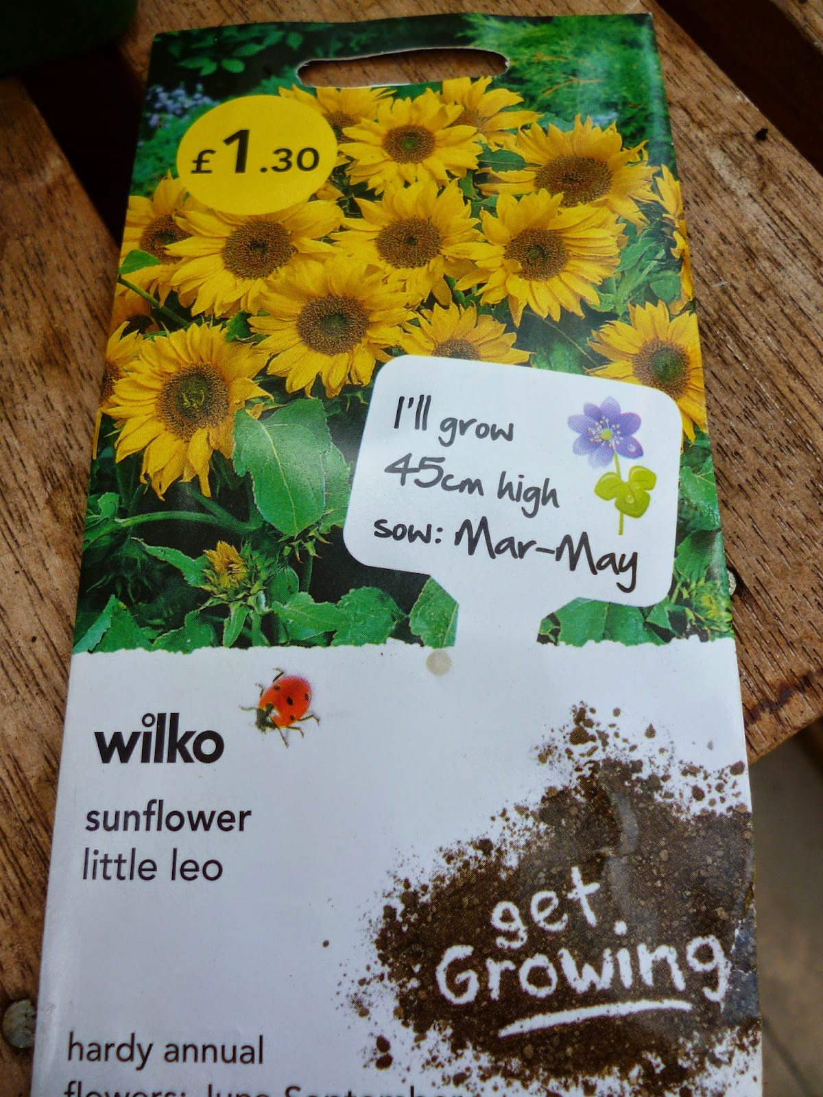 Little Leo Sunflower seeds