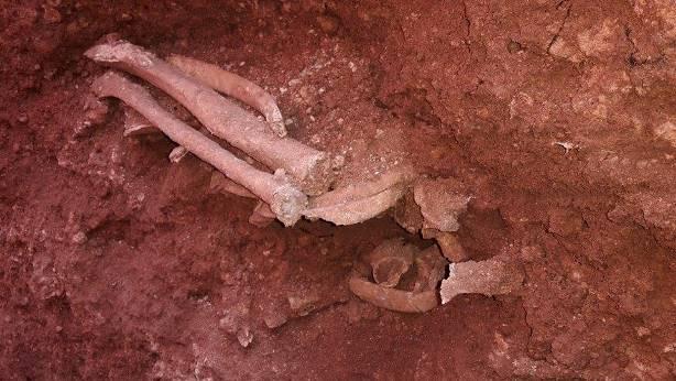 بقايا عظام عثر عليها متنزهون في غابة بالمانيا تعود لفتاة لسورية!!