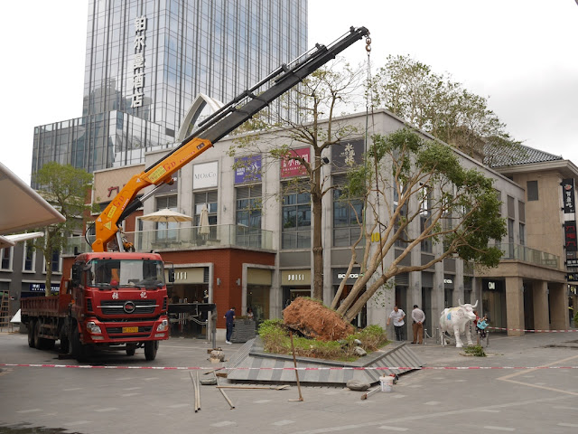 small crane lifting a fallen tree at the Midtown in Zhuhai