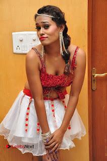 Telugu Dancer Nisha  Pictures at Babu Bangaram Audio Launch  0031.JPG